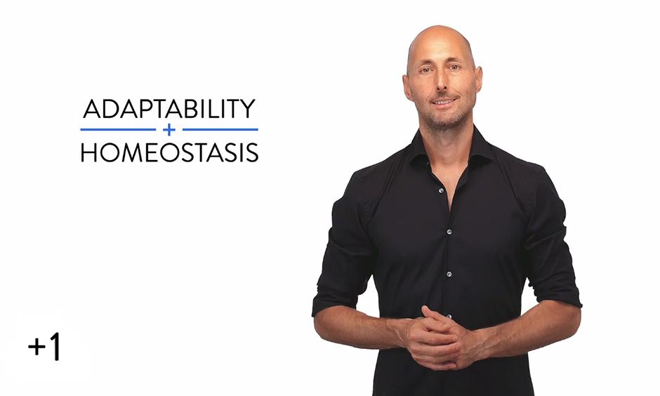 Adaptability + Homeostasis