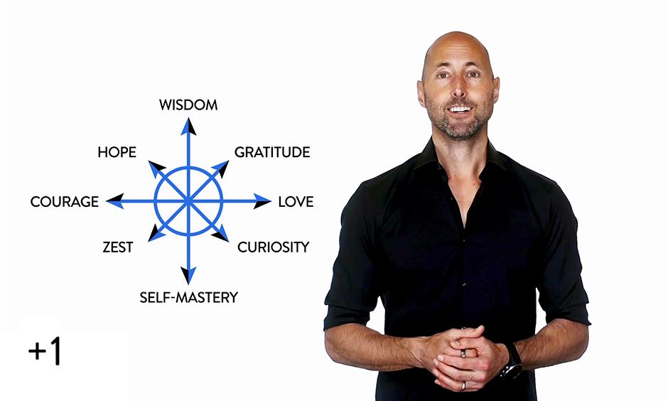 The Optimize Compass