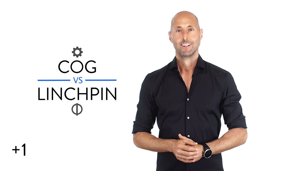 Cog vs. Linchpin